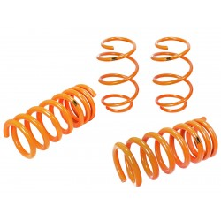 AFE Control Lowering Springs Ford Mustang GT (S550) 2015-2016 V8