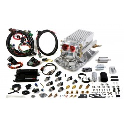Holley Avenger EFI Stealth Ram™ MPFI Fuel Injection System, Small Block Chevy Vortec Heads