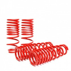 Skunk2 Lowering Springs Set Honda Civic 1996-2000