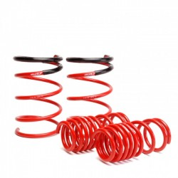 Skunk2 Lowering Coil Springs Set Honda Civic SI 2002-2005