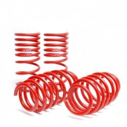Skunk2 Lowering Coil Springs Set Honda Civic 2006-2011