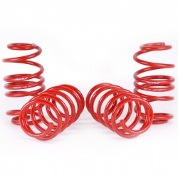 Skunk2 Lowering Springs Set Honda Civic 2012-2015