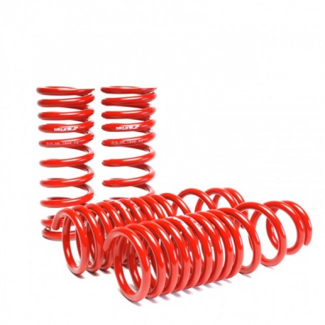 Skunk2 Lowering Coil Springs Set Acura Integra 1990-1993